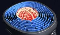 Terapia cognitiv comportamentală în SM