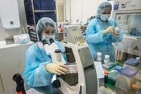 Imunoterapia promite rezultate în tratarea SM